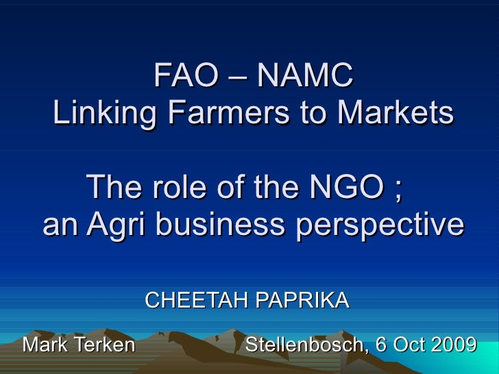 FAO – NAMC Linking Farmers to Markets The role of the NGO ;  an Agri business perspective CHEETAH PAPRIKA  Mark Terken  St...