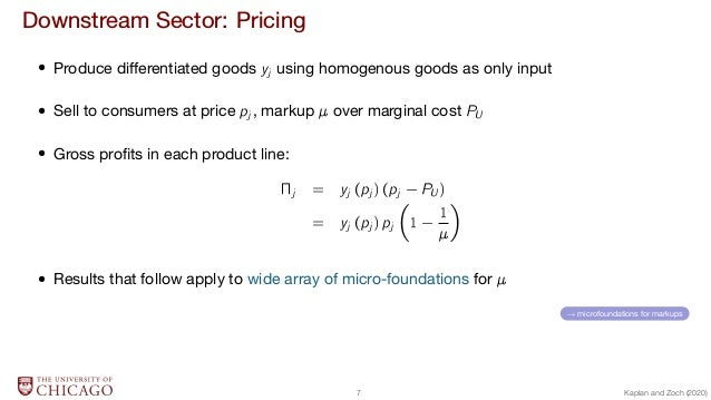 Downstream Sector: Pricing  Produce differentiated goods yj using homogenous goods as only input  Sell to consumers at pri...