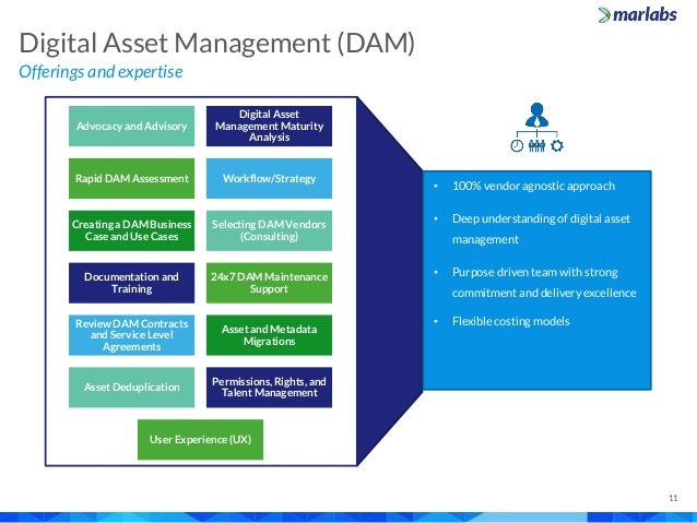 Offerings and expertise Digital Asset Management (DAM) 11 Advocacy and Advisory Digital Asset Management Maturity Analysis...