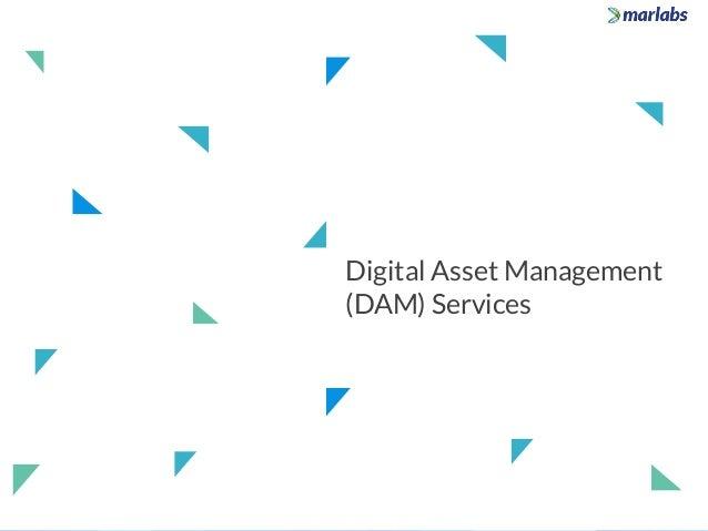 Digital Asset Management (DAM) Services
