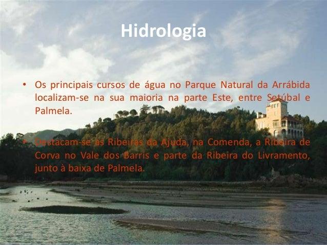Hidrologia• Os principais cursos de água no Parque Natural da Arrábidalocalizam-se na sua maioria na parte Este, entre Set...