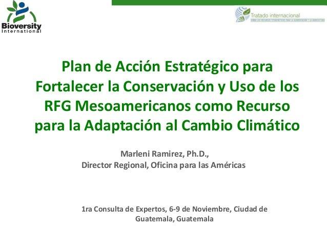 Plan de Acción Estratégico paraFortalecer la Conservación y Uso de los RFG Mesoamericanos como Recursopara la Adaptación a...