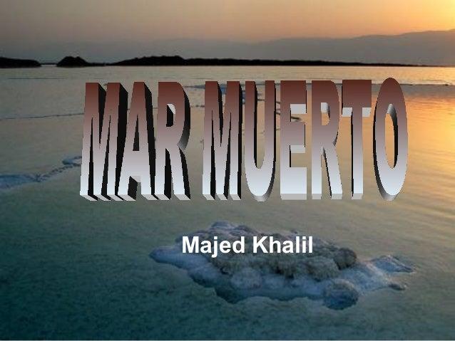Majed Khalil