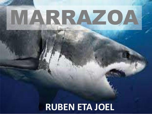 MARRAZOA RUBEN ETA JOEL
