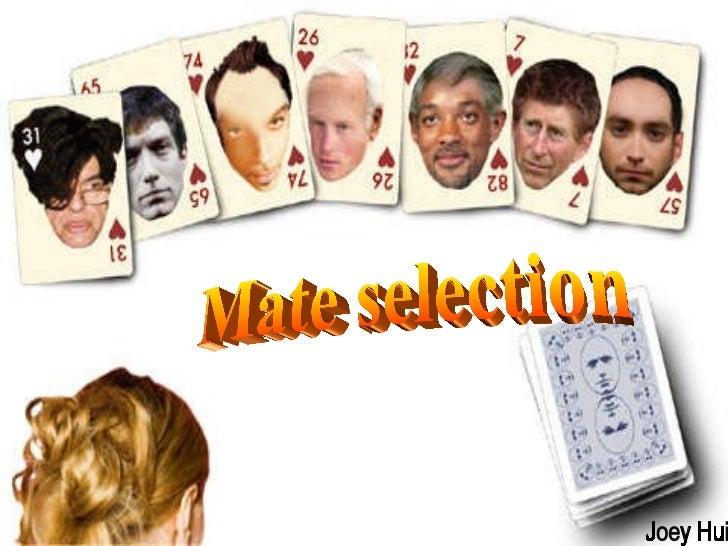 Mate selection Joey Hui