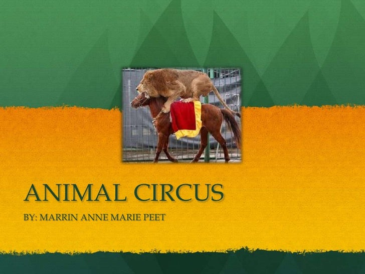 ANIMAL CIRCUSBY: MARRIN ANNE MARIE PEET
