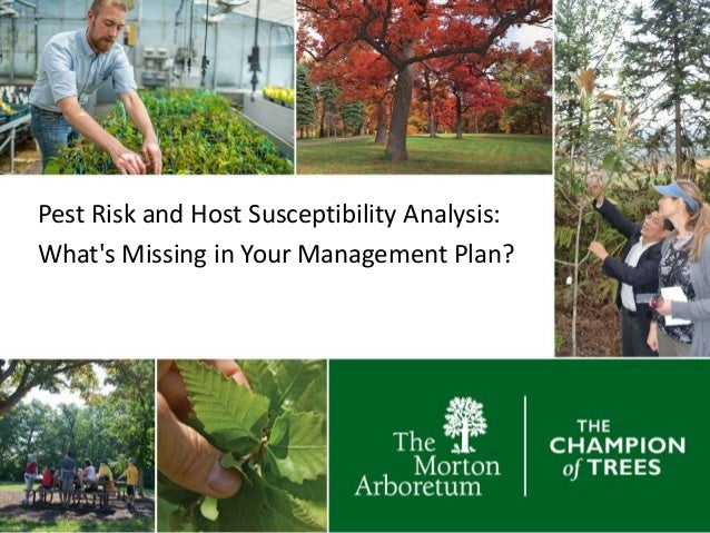 Pest Risk and Host Susceptibility Analysis: What's Missing in Your Management Plan?