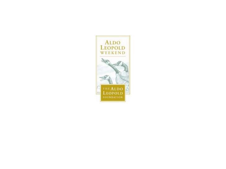 "marshland elegy essay In ""marshland elegy,"" an essay in a sand county almanac, aldo leopold described a dawn wind slowly rolling a bank of fog across a wisconsin marsh ""like the."
