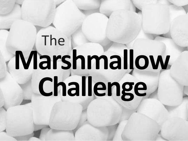 Lucas King Synergy Summit 2013 Marshmallow Challenge