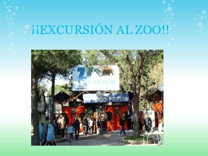 ¡¡EXCURSIÓN AL ZOO!!
