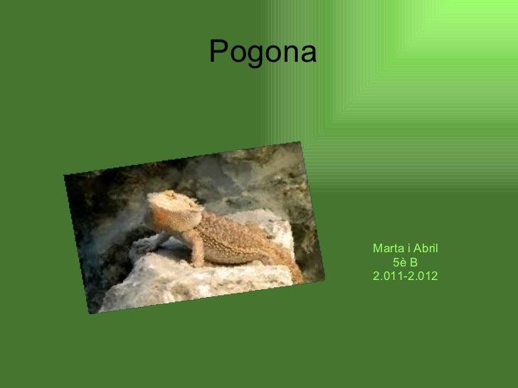 Pogona Marta i Abril 5è B 2.011-2.012