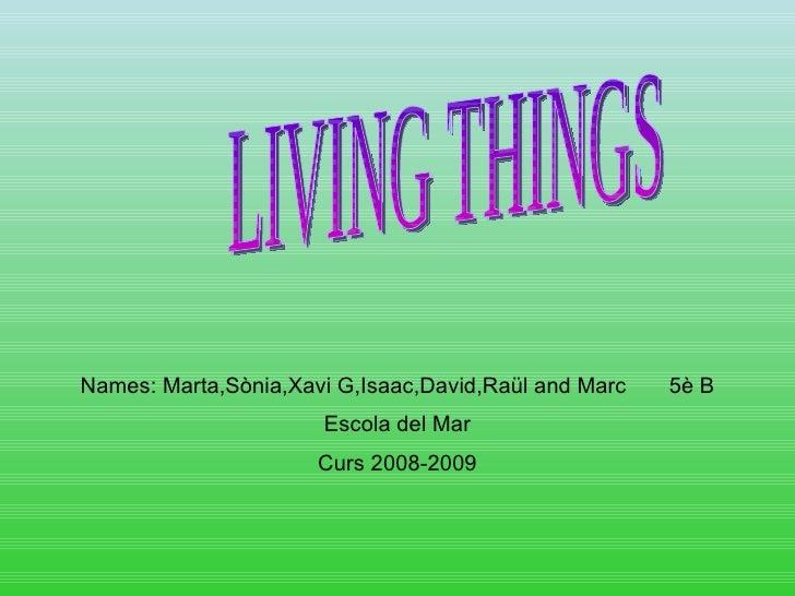 Names: Marta,Sònia,Xavi G,Isaac,David,Raül and Marc  5è B Escola del Mar Curs 2008-2009 LIVING THINGS