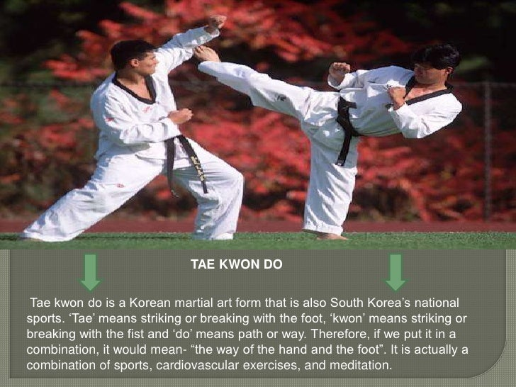 TYPES OF MARTIAL ARTS STYLES