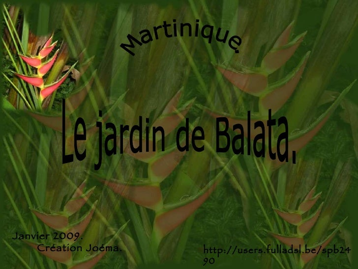 Martinique. Le jardin de Balata. Janvier 2009.  Création Joéma. http://users.fulladsl.be/spb2490