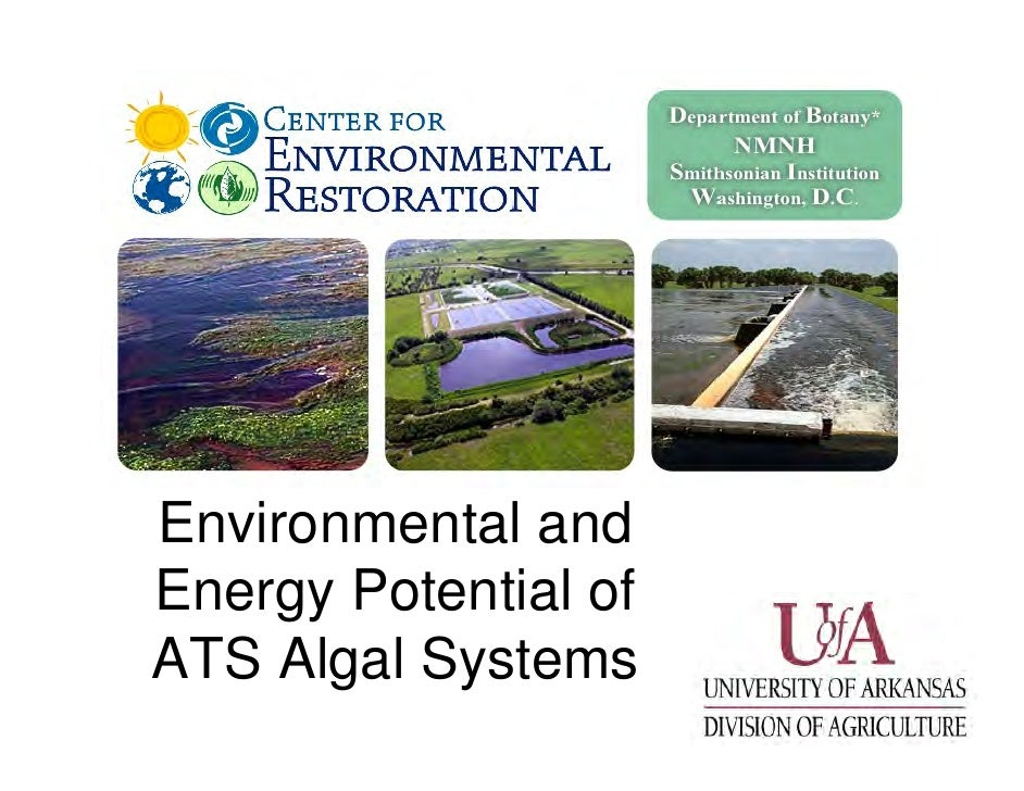 Environmental and Energy Potential of ATS Algal Systems