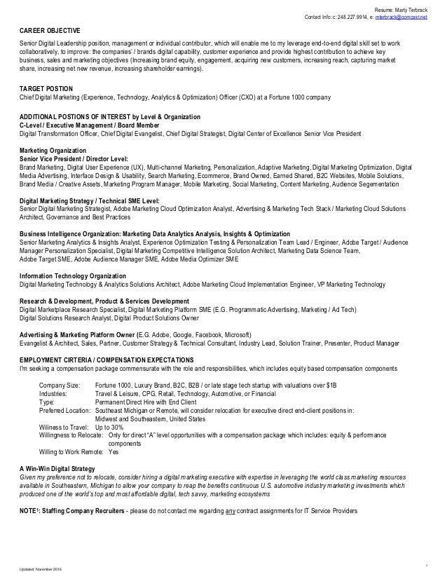vp of information technology resume samples