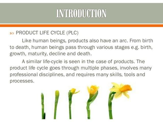 Maruti 800 ppt bibilography 3 product life sciox Choice Image