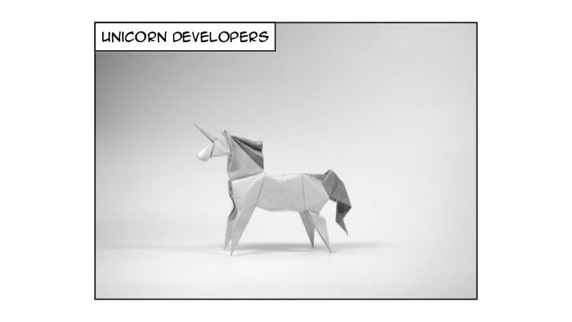 ninja developers