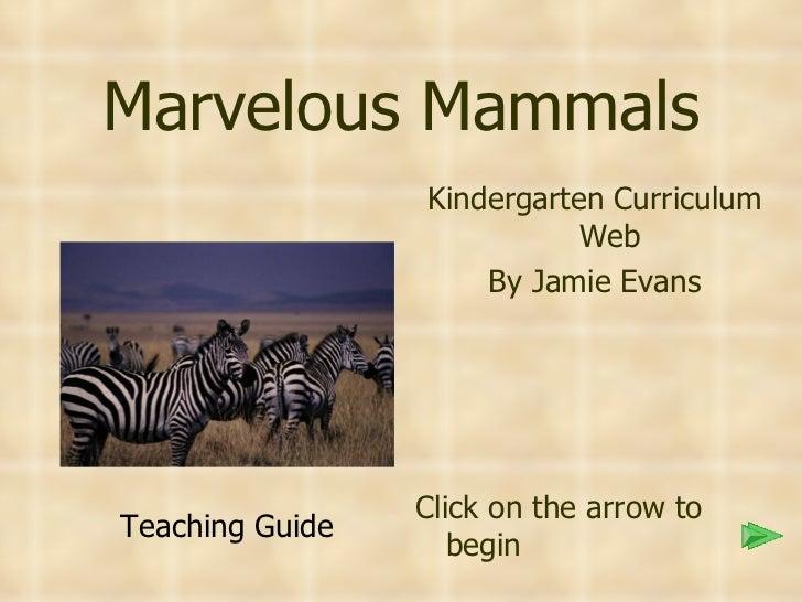 Marvelous Mammals <ul><li>Kindergarten Curriculum Web </li></ul><ul><li>By Jamie Evans </li></ul><ul><li>Click on the arro...