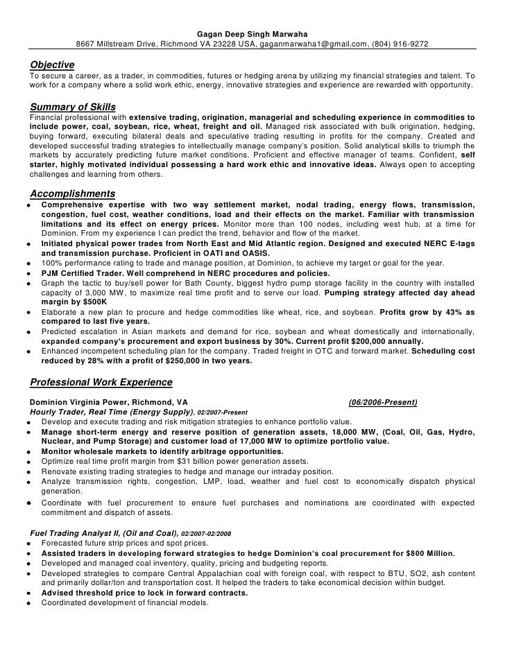 Elegant Day Trader Resume