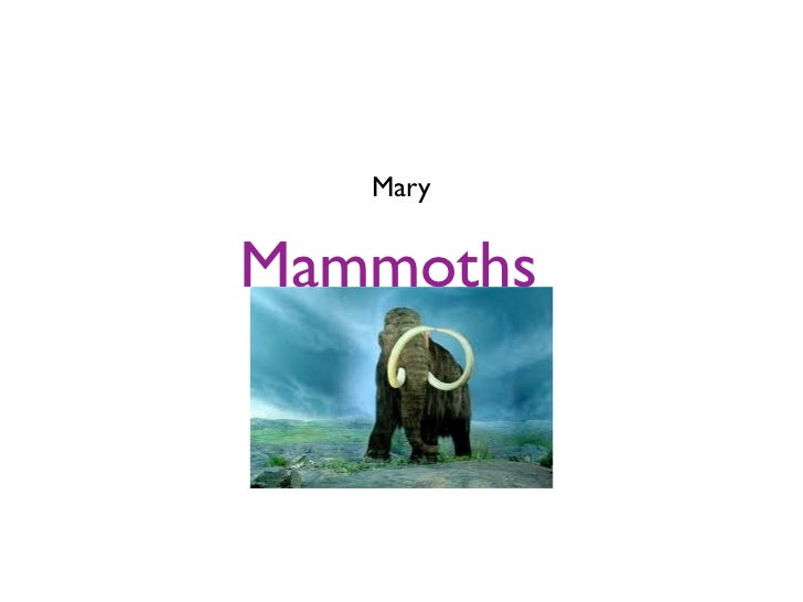 MaryMammoths