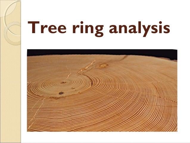 Tree Ring Analysis Master Chronology Dendrochronology