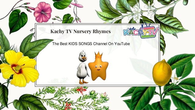free download babies video songs