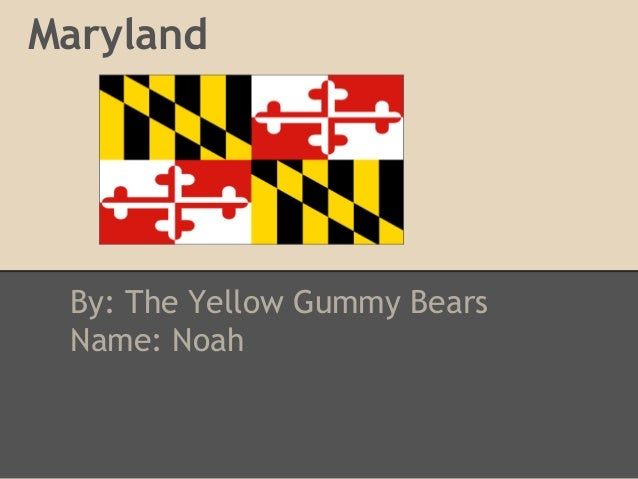 Maryland By: The Yellow Gummy Bears Name: Noah