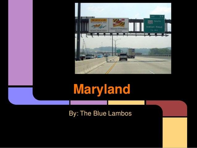 MarylandBy: The Blue Lambos