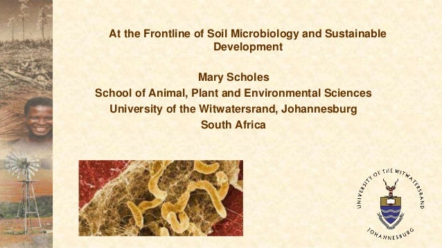 The living soil an introduction to the global scientific for Introduction of soil