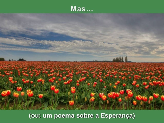 (ou: um poema sobre a Esperança)(ou: um poema sobre a Esperança)