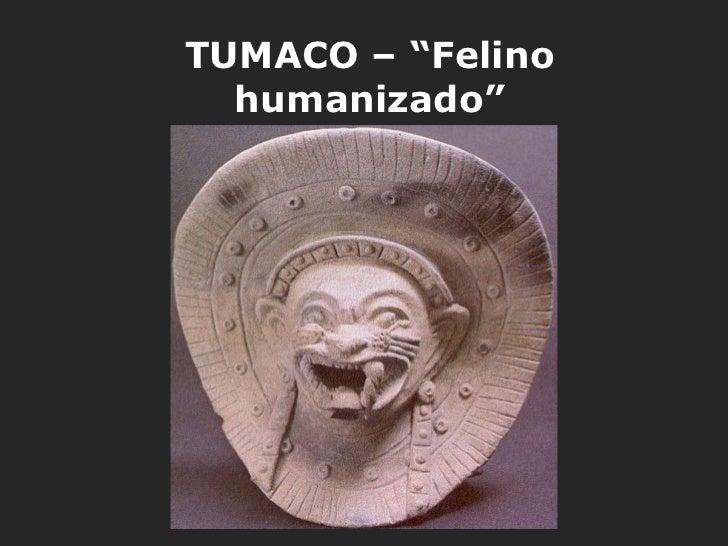 """TUMACO – """"Felino  humanizado"""""""