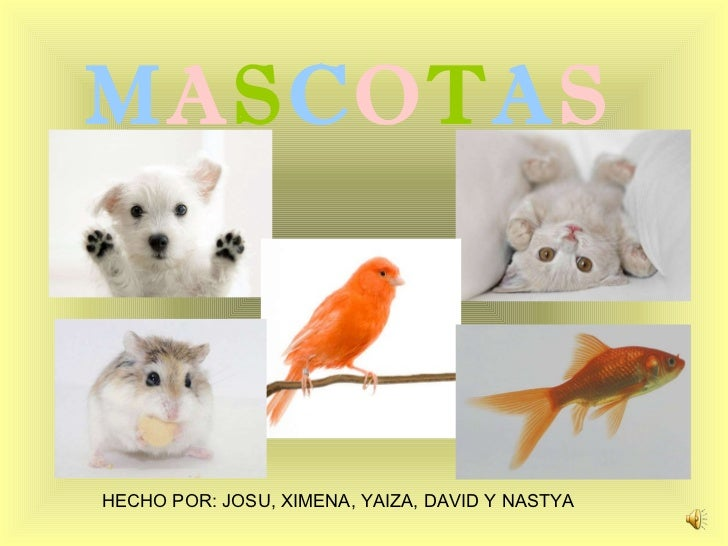 M A S C O T A S HECHO POR: JOSU, XIMENA, YAIZA, DAVID Y NASTYA