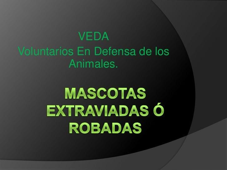 VEDAVoluntarios En Defensa de los          Animales.