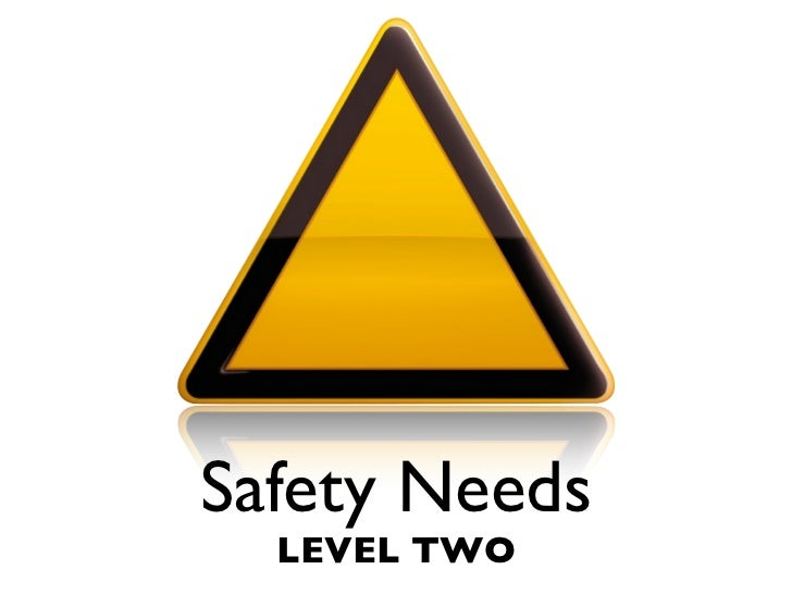Safety Needs   LEVEL TWO