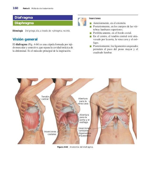 Los ungüentos a la osteocondrosis a la alimentación de pecho