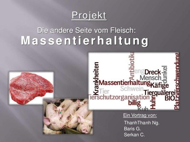 Projekt  Die andere Seite vom Fleisch:Massentierhaltung                           Ein Vortrag von:                        ...