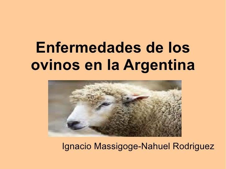 Enfermedades de los ovinos en la Argentina Ignacio Massigoge-Nahuel Rodriguez
