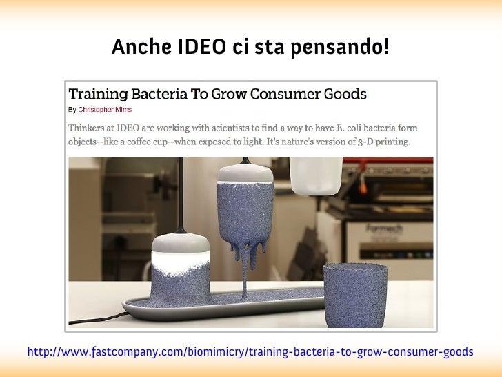 Anche IDEO ci sta pensando!http://www.fastcompany.com/biomimicry/training-bacteria-to-grow-consumer-goods