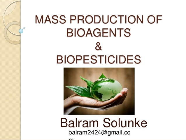 MASS PRODUCTION OF BIOAGENTS & BIOPESTICIDES Balram Solunke balram2424@gmail.co