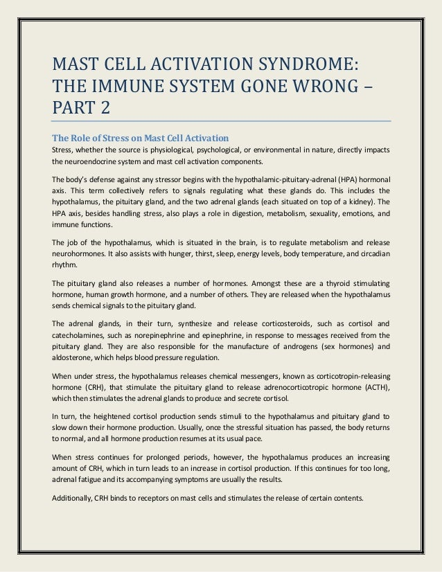 Mast Cell Activation Syndrome: The Immune System Gone Wrong