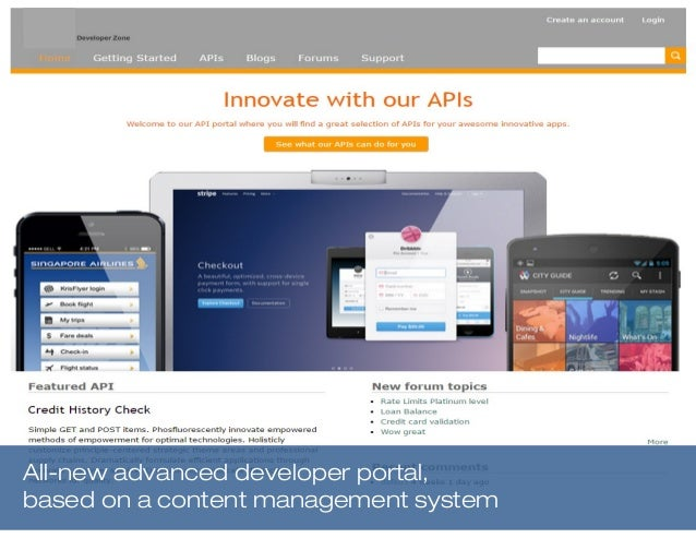All-new advanced developer portal, based on a content management system