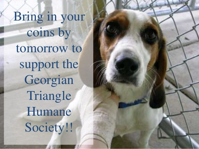 Bring in your  coins bytomorrow to support the  Georgian  Triangle  Humane  Society!!