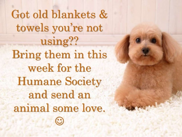Got old blankets & towels you're not using?? Bring them in this week for the Humane Society and send an animal some love. 