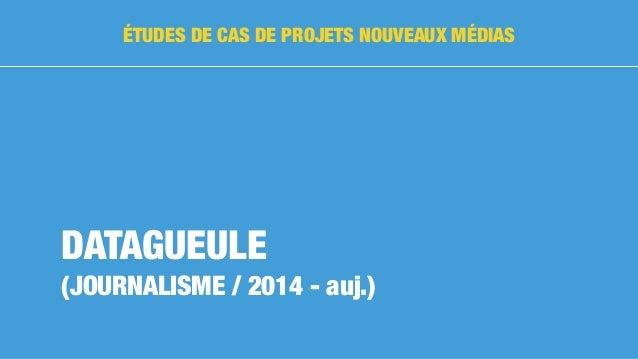 DATAGUEULE (JOURNALISME / 2014 - auj.) ÉTUDES DE CAS DE PROJETS NOUVEAUX MÉDIAS