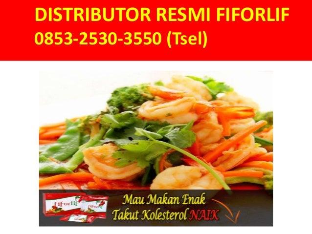 Distributor Resmi Fiforlif; Smileydot.us