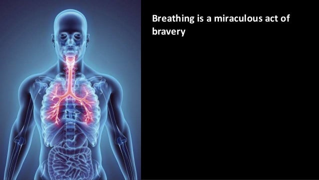 Breathing is a miraculous act of bravery