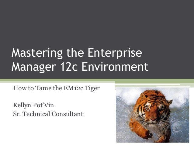 Mastering the Enterprise Manager 12c Environment How to Tame the EM12c Tiger  Kellyn Pot'Vin Sr. Technical Consultant
