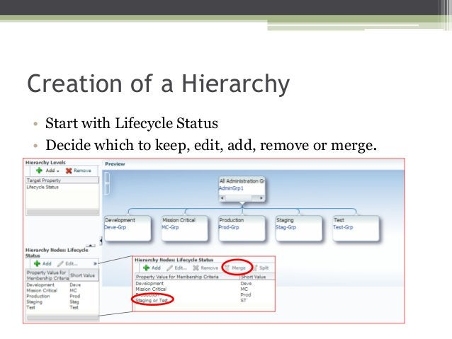 Creation of a Hierarchy • Start with Lifecycle Status • Decide which to keep, edit, add, remove or merge.