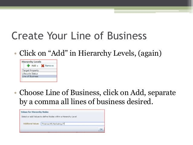 """Create Your Line of Business • Click on """"Add"""" in Hierarchy Levels, (again)  • Choose Line of Business, click on Add, separ..."""
